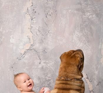 Яркая и веселая детская фотосессия. Фотосъемка первого года жизни ребенка. Фотограф Лариса Дубинская. Днепр