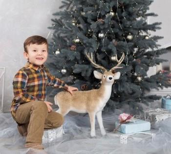 Детская новогодняя  фотосессия в фотостудии Птичка.